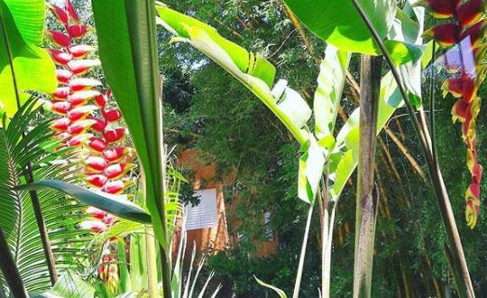Bem-estar e massagem em Ilhabela
